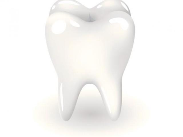 diente-origenes