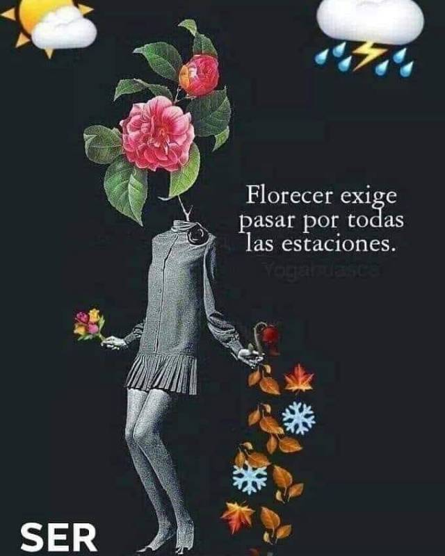 FLORECER EXIGE PASAR POR TODAS LAS ESTACIONES